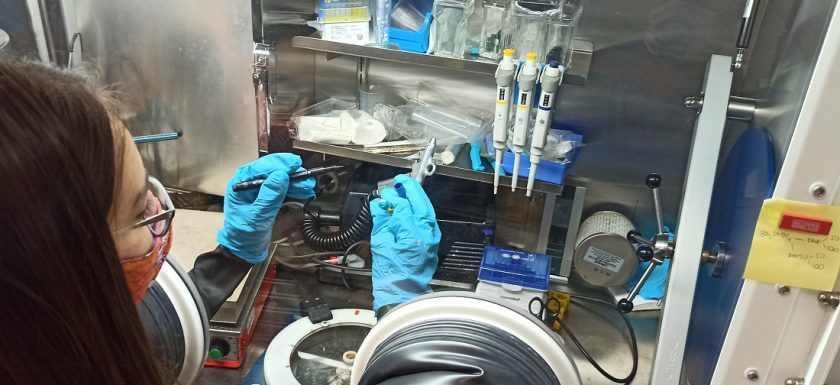 Picture: a summer student using the glove box.